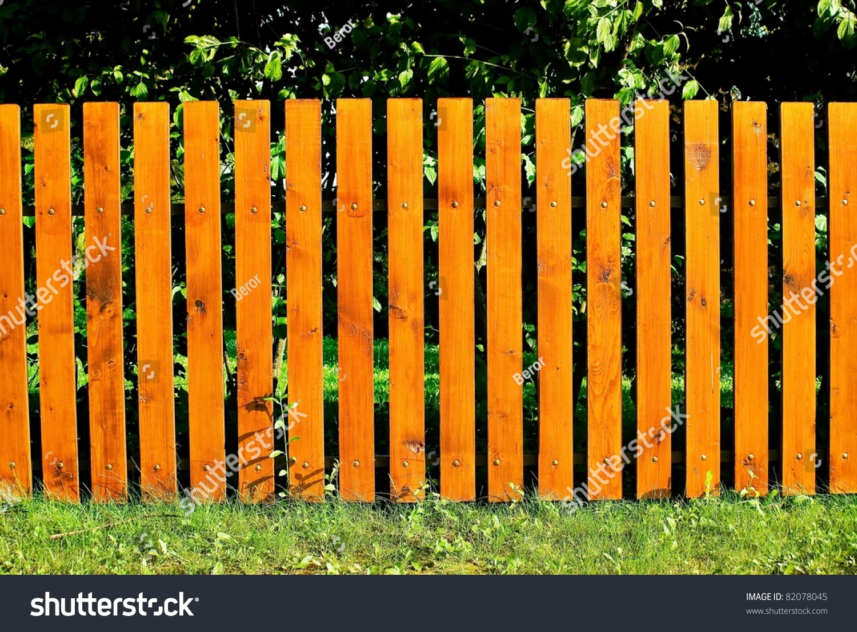 pleasant sunny backyard green grass nice stock photo 82078045
