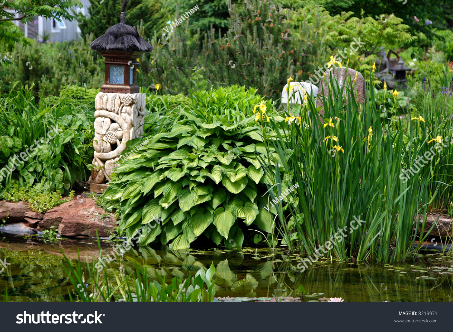Asian themed garden with a pool bordered by iris hosta for Japanese themed garden