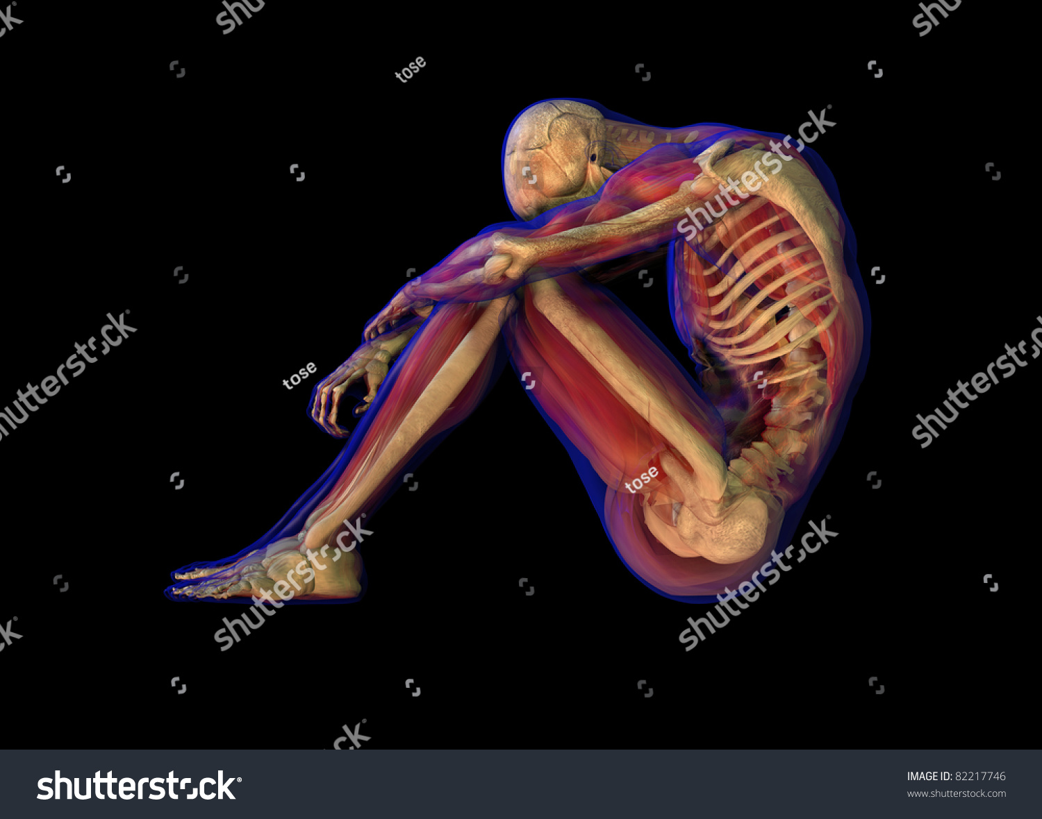 3d Illustration Of Human Male Anatomy And Skeleton ...