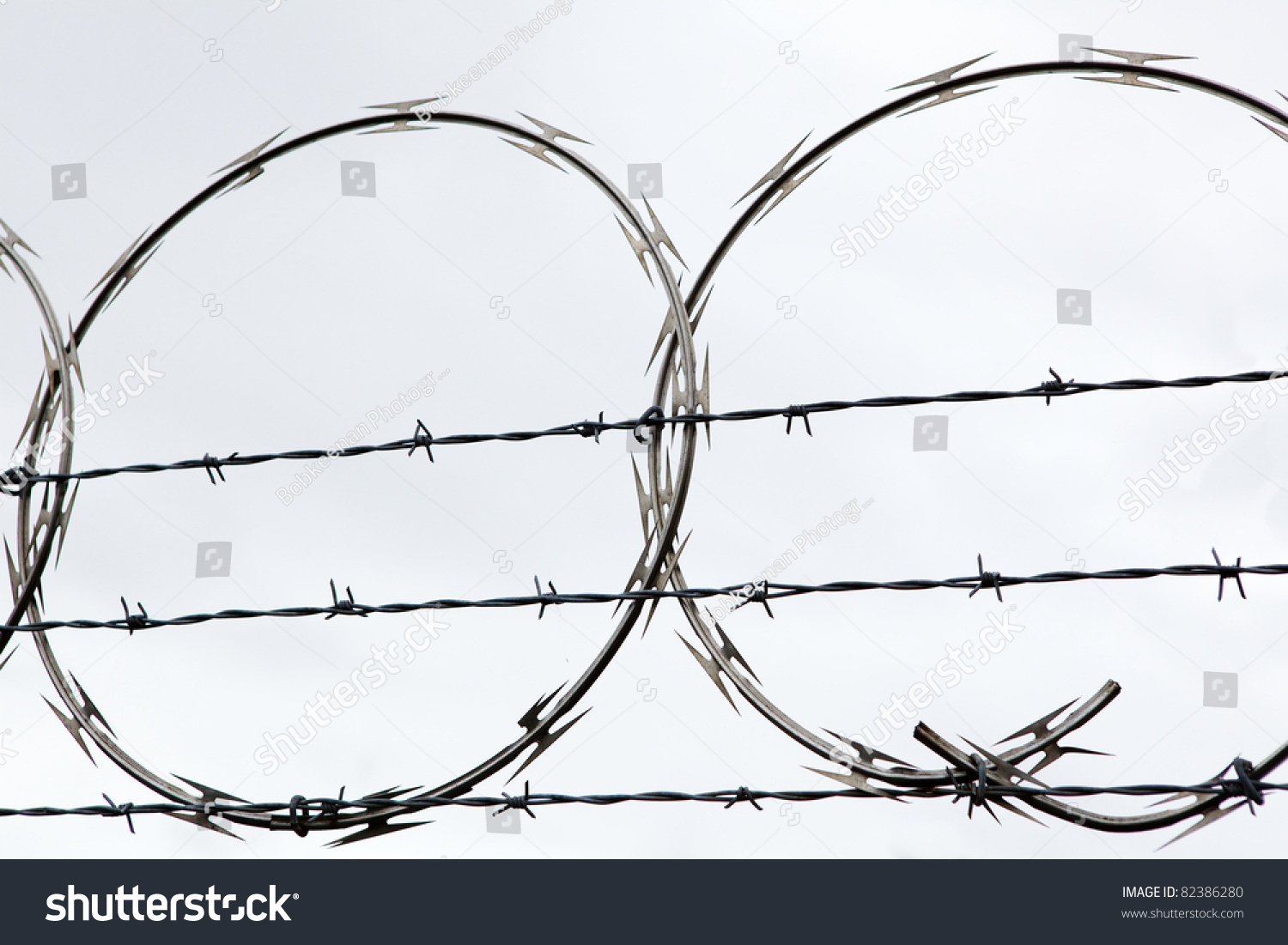 Nasty Looking Circular Barbed Wire On Stock Photo (Safe to Use ...