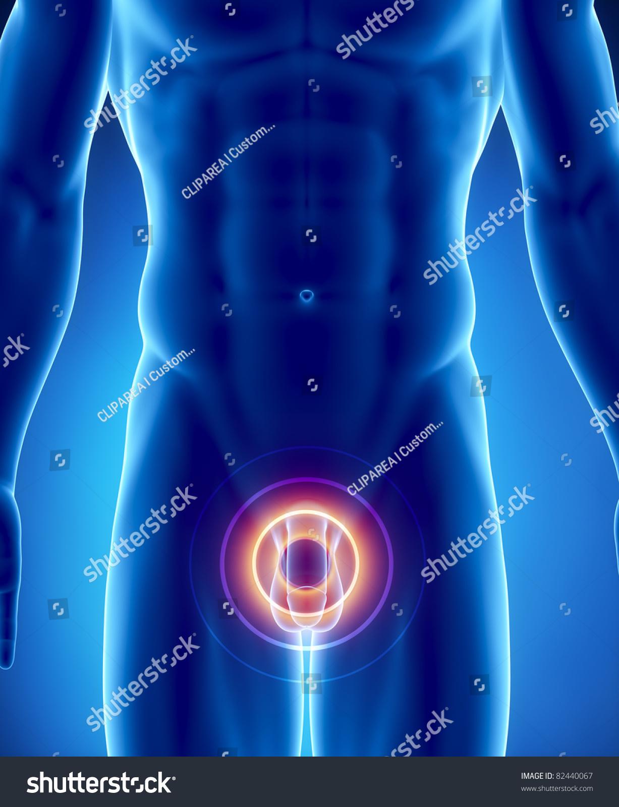 hvad er body to body massage gratis sex chat