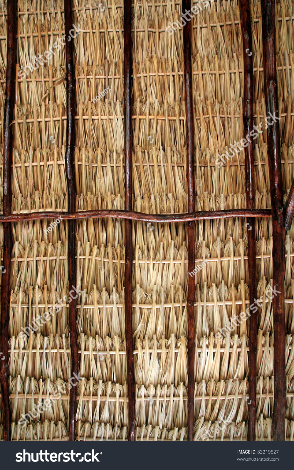 Dried Palm Tree Leaves Palapa Roof And Beams View From Under