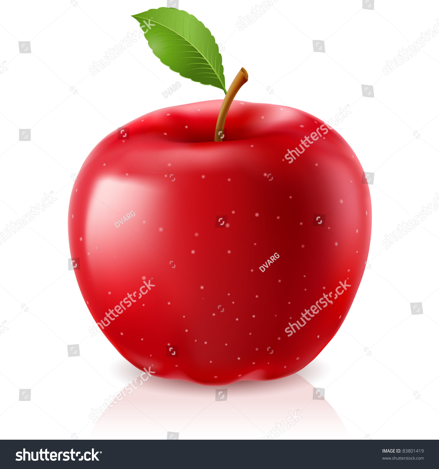 delicious green apple illustration-#15