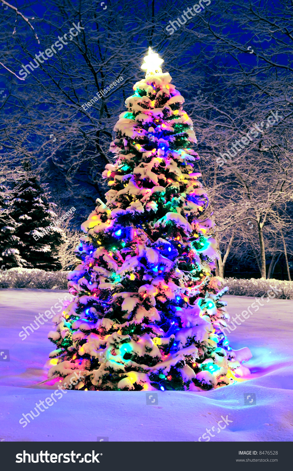 decorated christmas tree outside with lights covered with. Black Bedroom Furniture Sets. Home Design Ideas