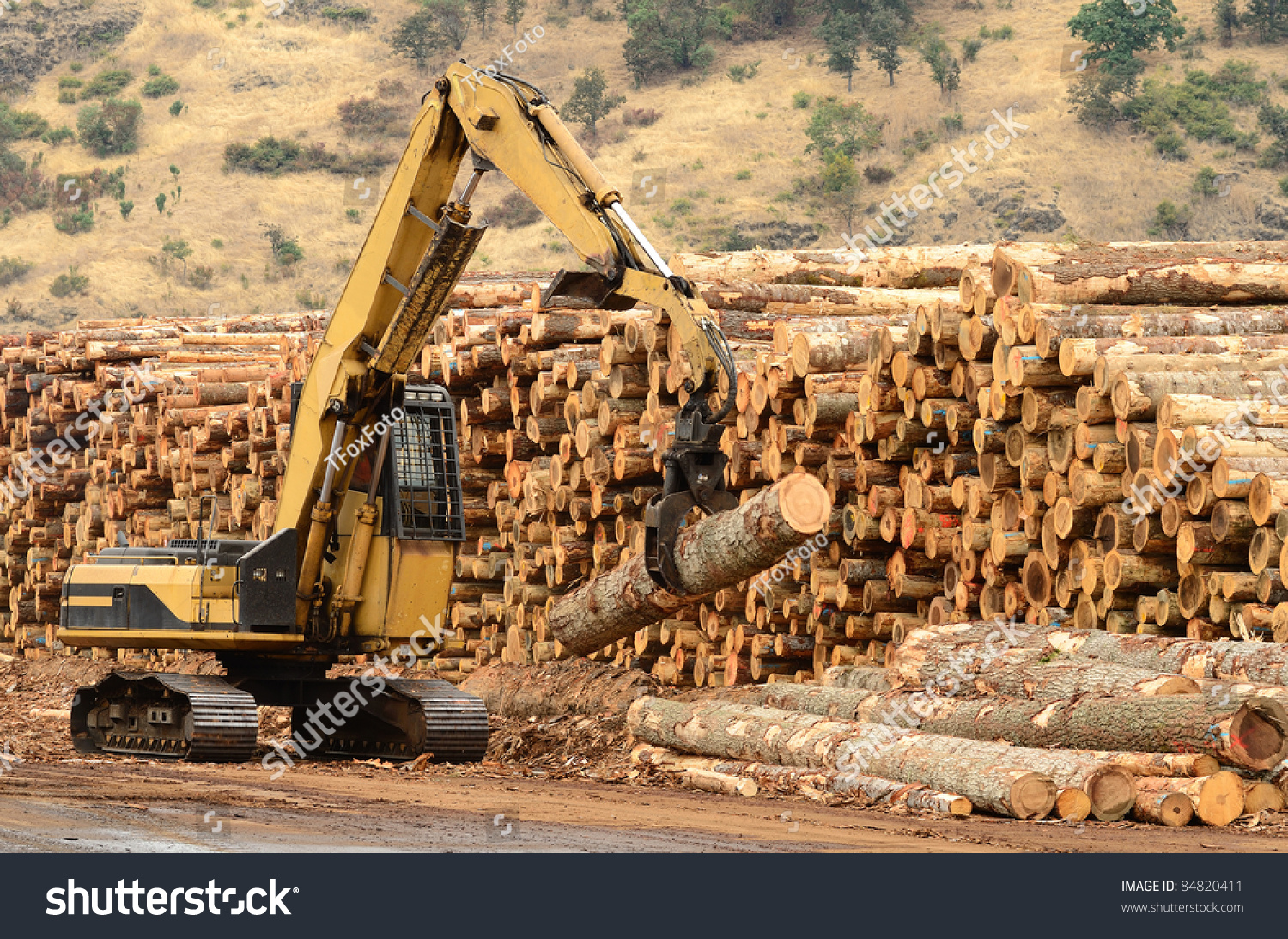 Track loader and operations in the log yard at a conifer for Mill log