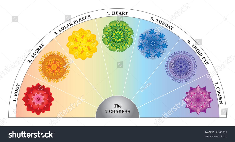 20 Chakra Color Chart Semicircle Mandalas Stock Vector Royalty ...