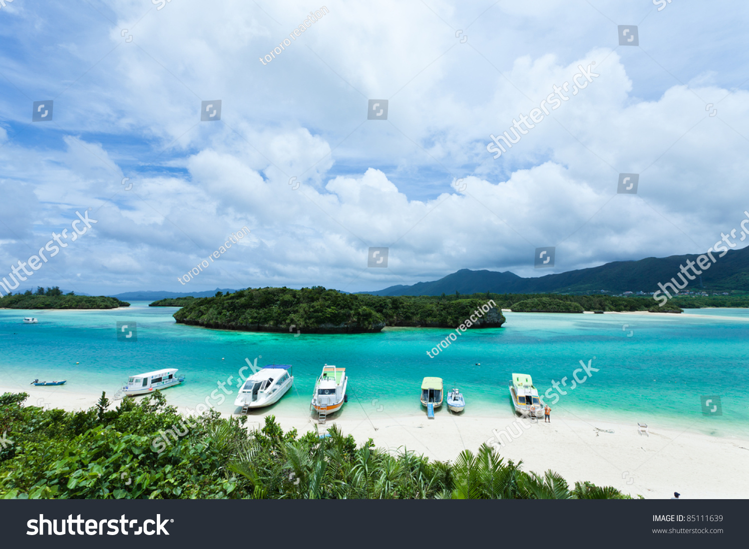Lagoon Tropical Island: Tropical Island Lagoon Clear Blue Water Stock Photo
