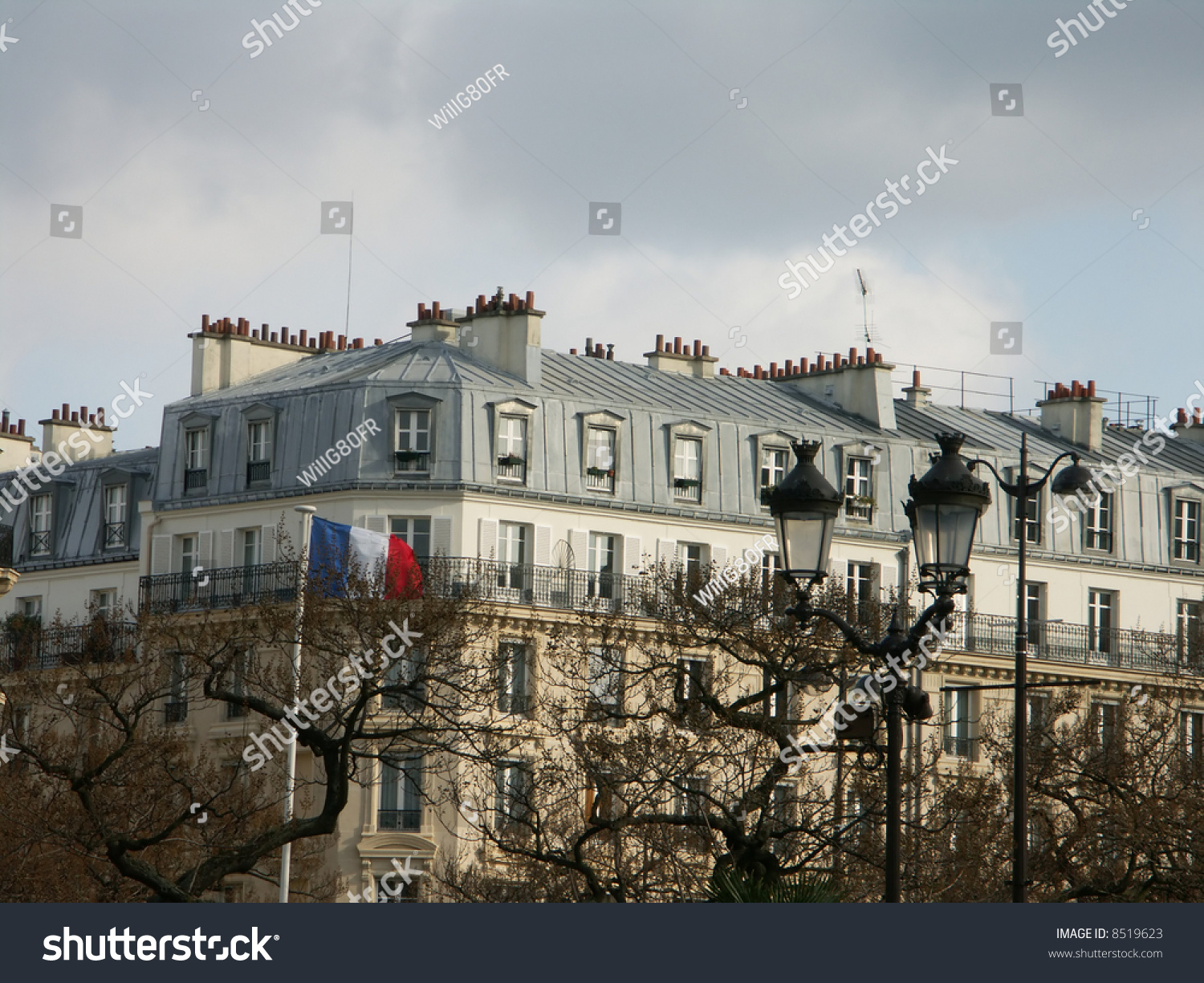 Paris Traditional Zinc Roofs Stock Photo 8519623