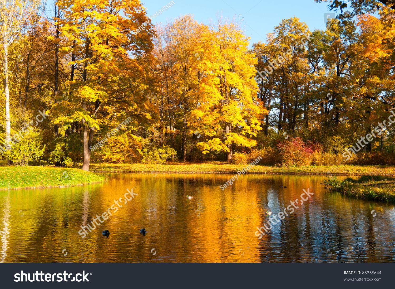 Beautiful Autumn Park Sunny Weather Stock Photo 85355644 ...