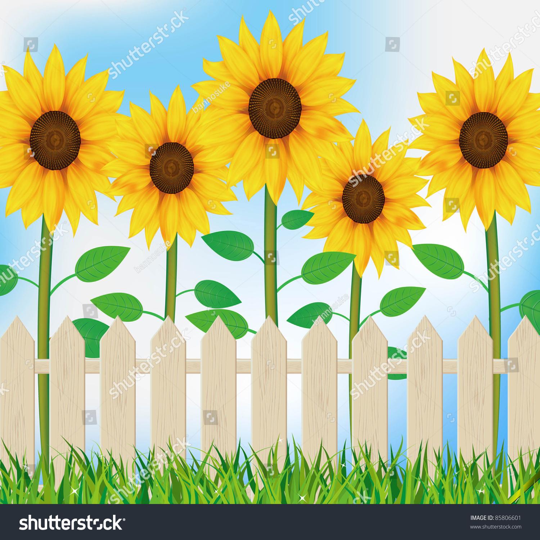 Illustration Sunflower Garden Fence Stock Illustration