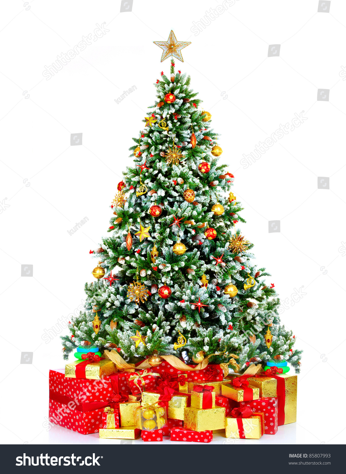 Real christmas trees with presents - Christmas Tree With Presents Over White Background