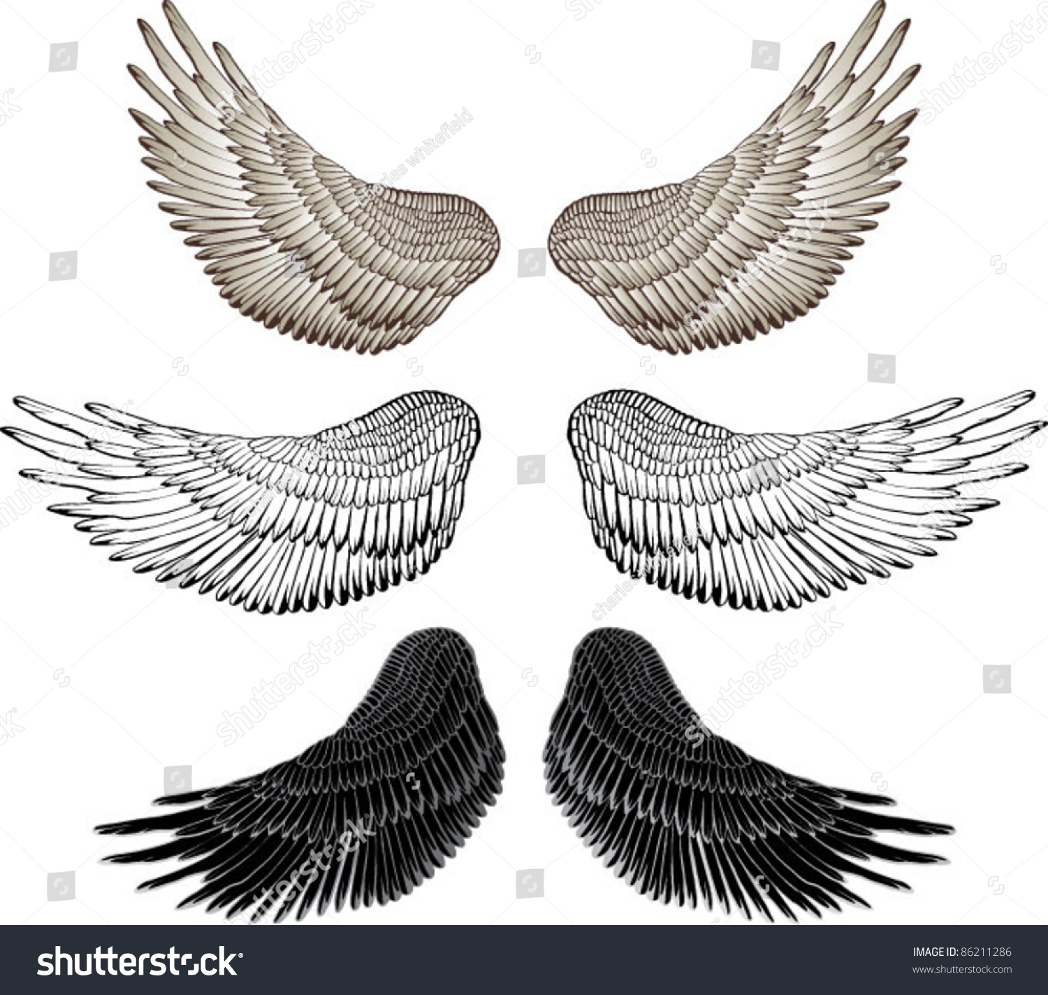 Eagle Wing Drawing Wings Vector 86211286