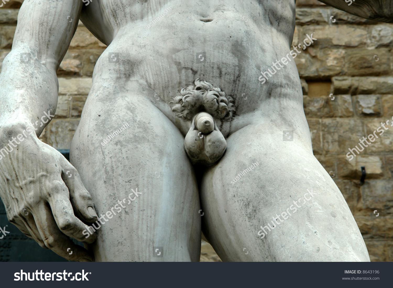 David Statue Penis 110
