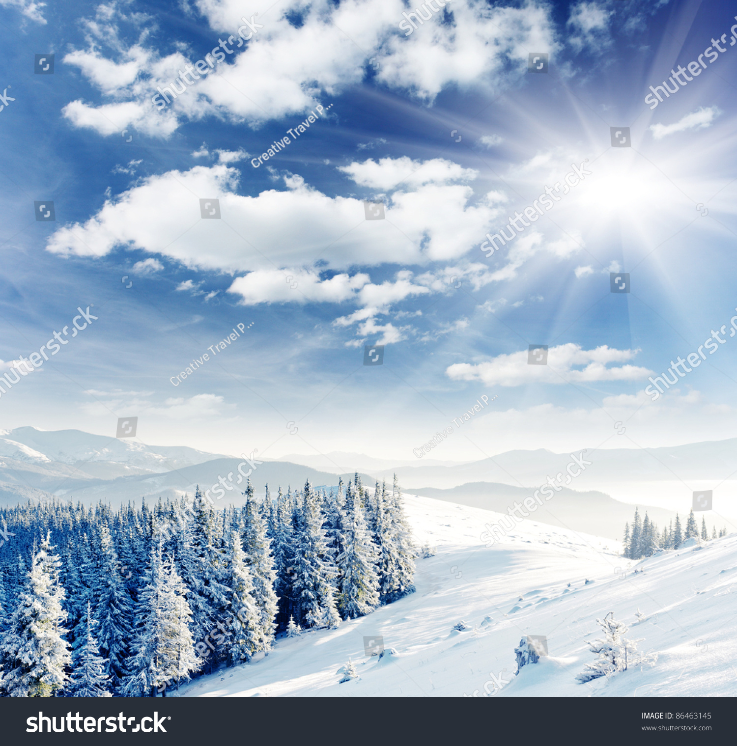 Beautiful Winter Landscape Snow Covered Trees Stock Photo