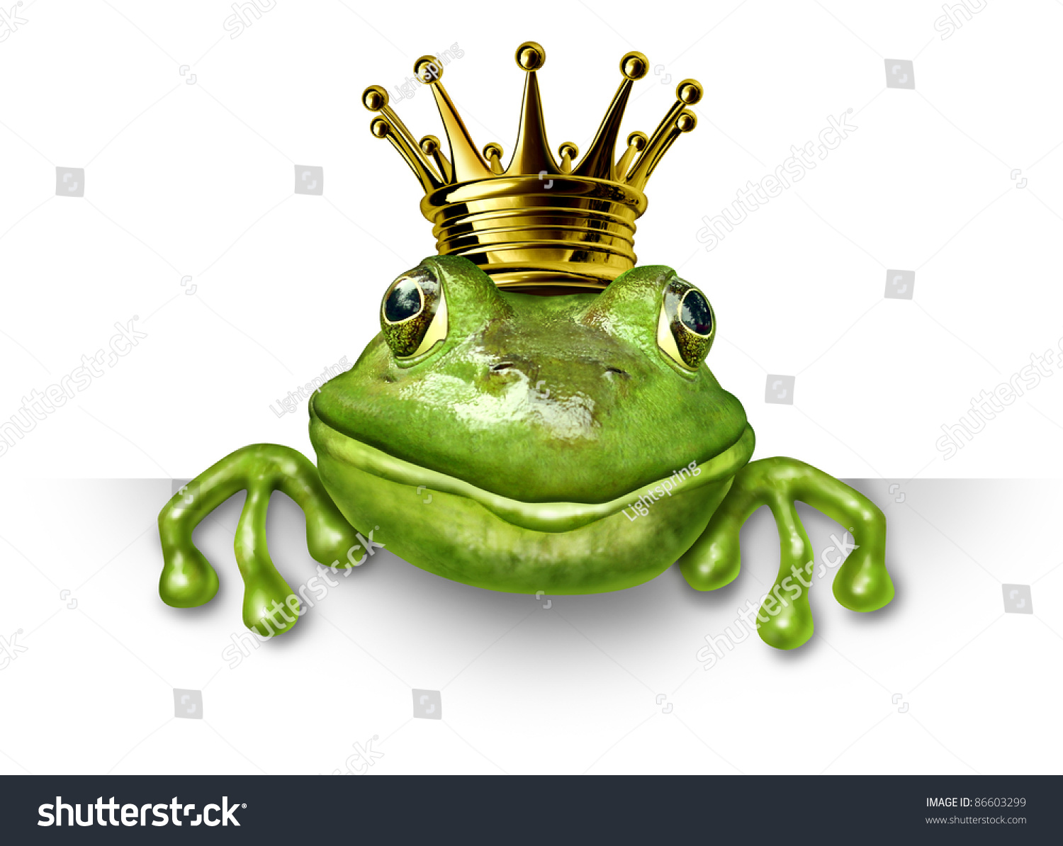 Frog prince with small gold crown holding a blank sign for Frog transformation