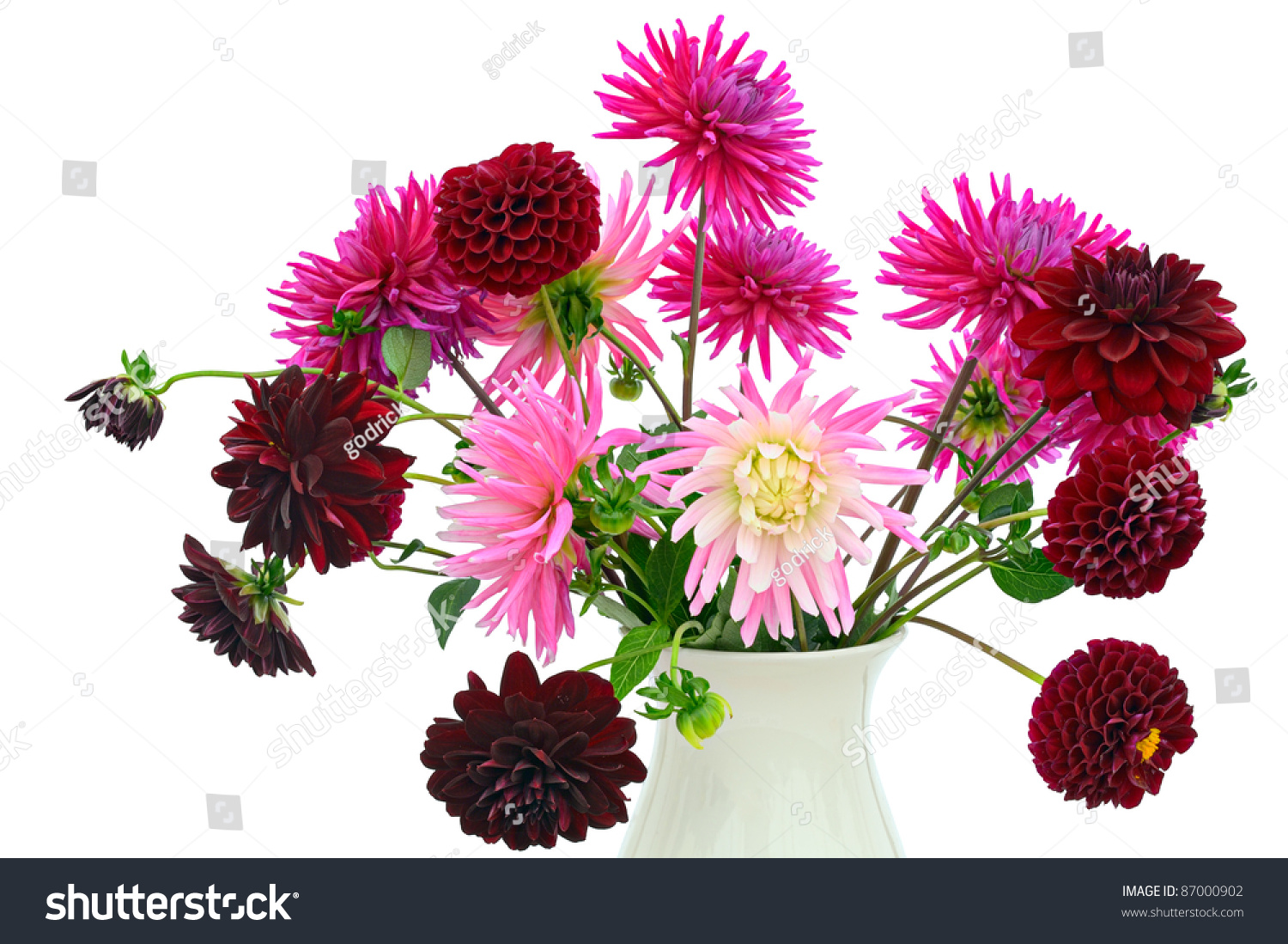 Flower arrangement dark red pink chrysanthemums stock photo image flower arrangement of dark red and pink chrysanthemums and dahlias in a vase izmirmasajfo