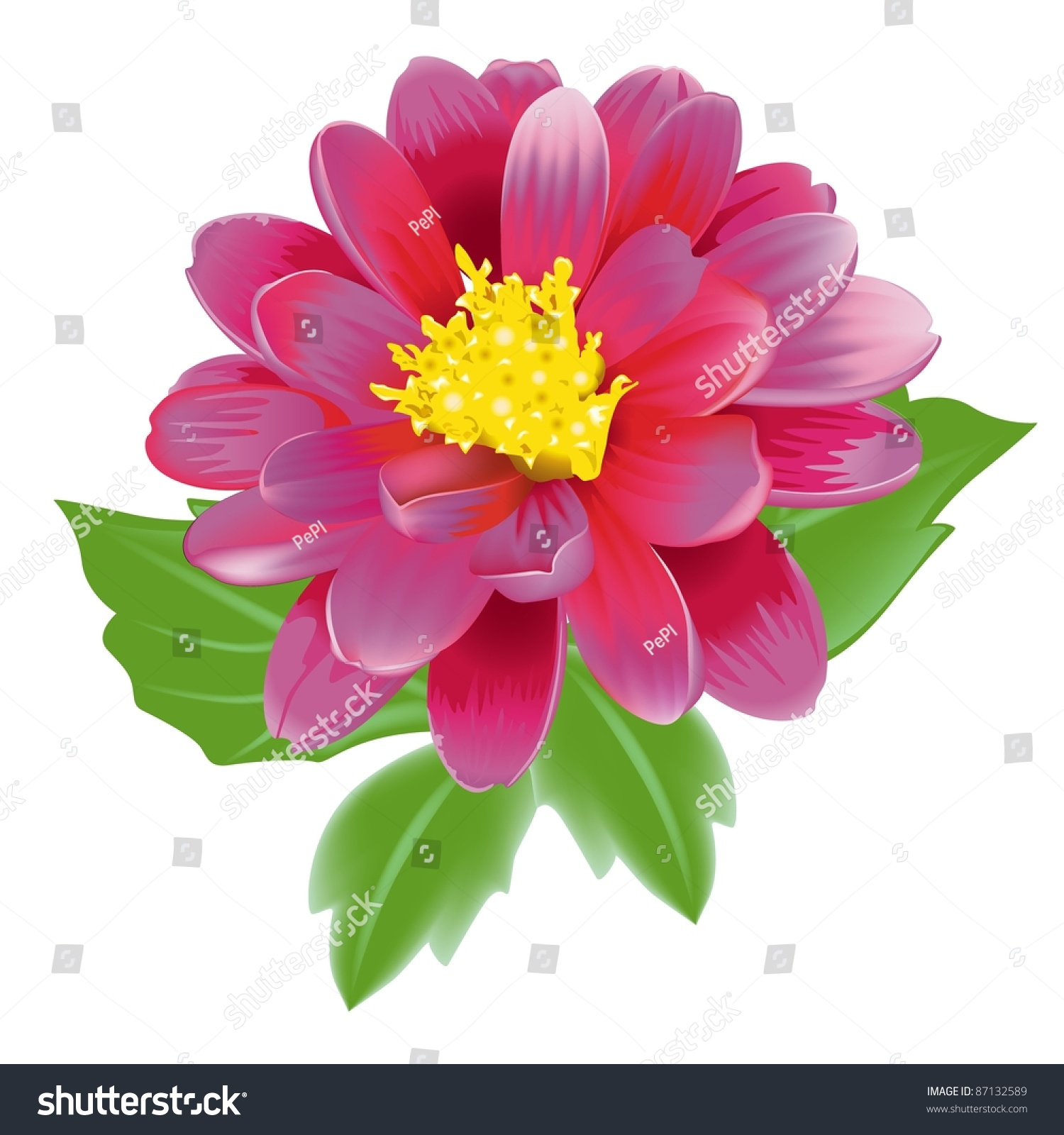 Amazing beautiful exotic flower pictures inspiration images for unusual beautiful exotic flower ideas wedding and flowers izmirmasajfo Images