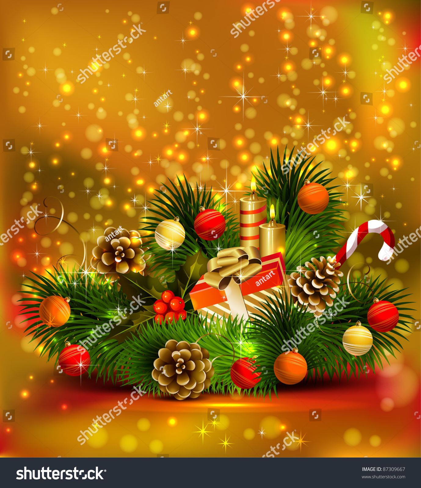 Christmas still life branch fir tree stock vector