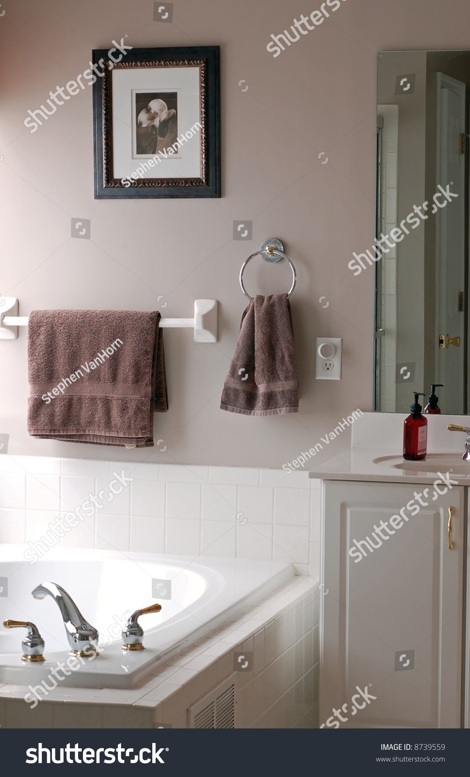 Nicely Decorated Bathroom In A Luxury Home Stock Photo. Conference Room Chairs. Home Decorating Store. Decorations For Living Room. Swivel Glider Chairs Living Room. Wedding Shower Decor. Marshalls Home Decor. Cute Baby Rooms. Window Mirrors Decorative