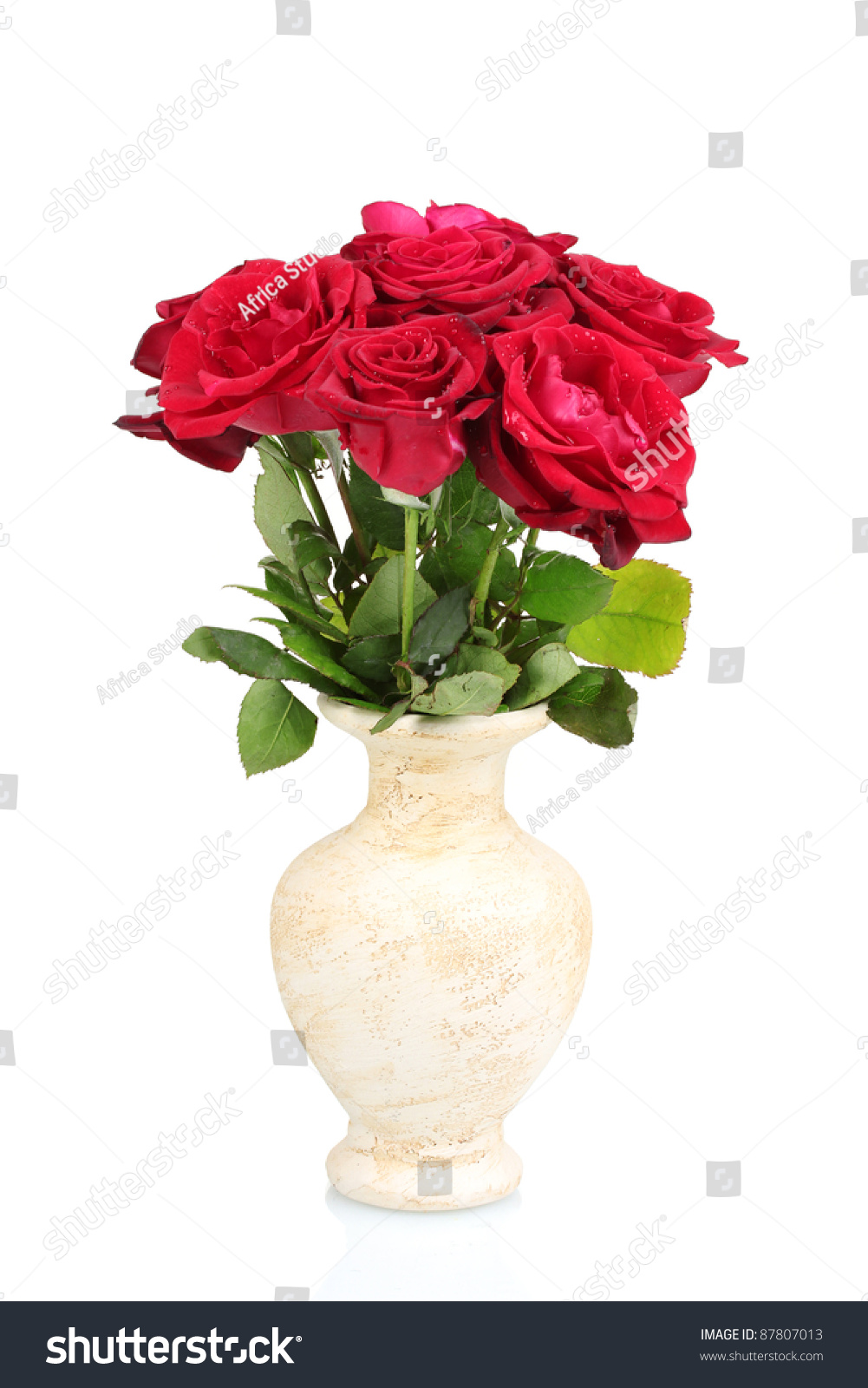 Beautiful red roses vase isolated on stock photo 87807013 beautiful red roses in a vase isolated on white floridaeventfo Choice Image