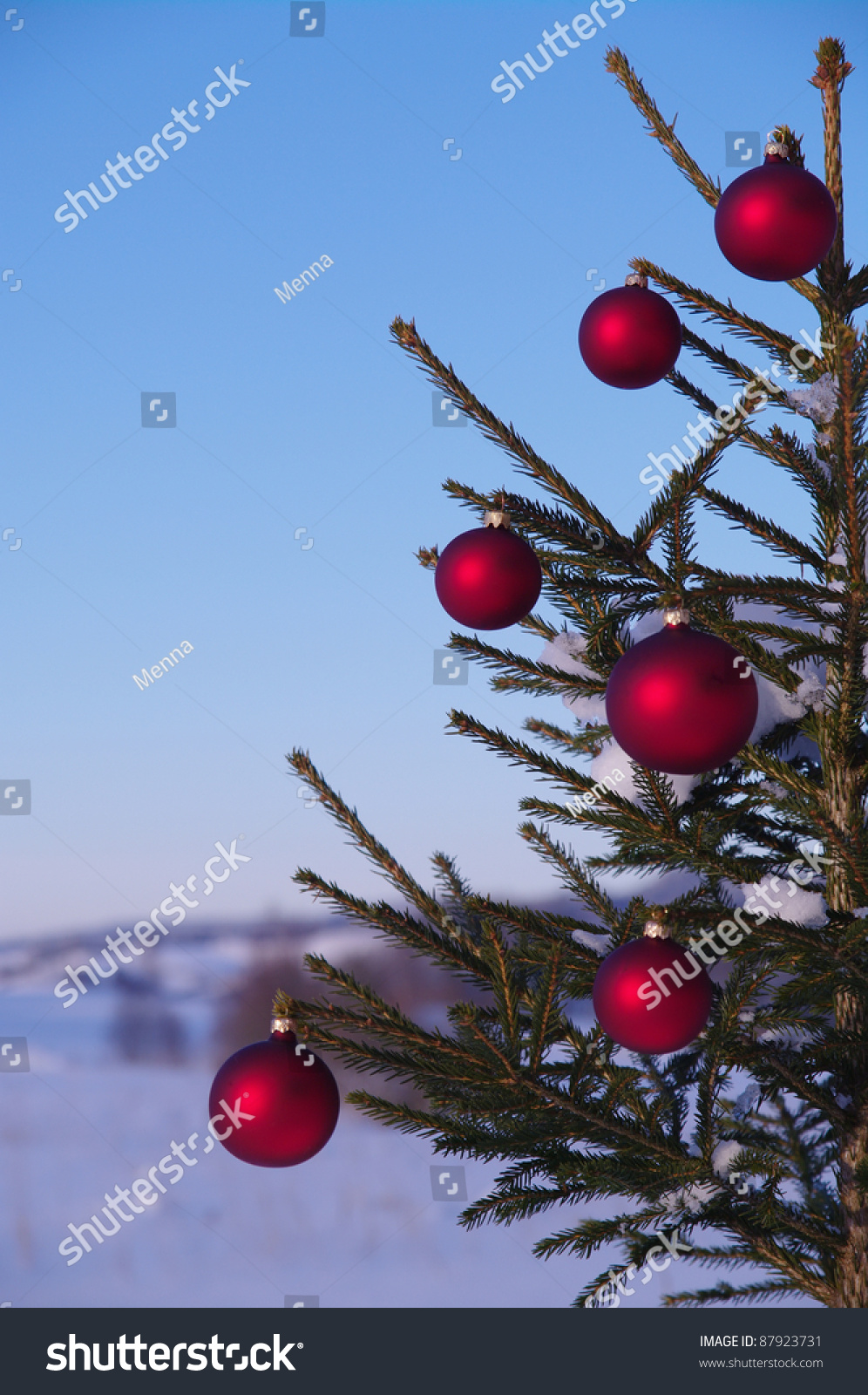 Baubles on a christmas tree outside in a snowy landscape for Outside christmas baubles