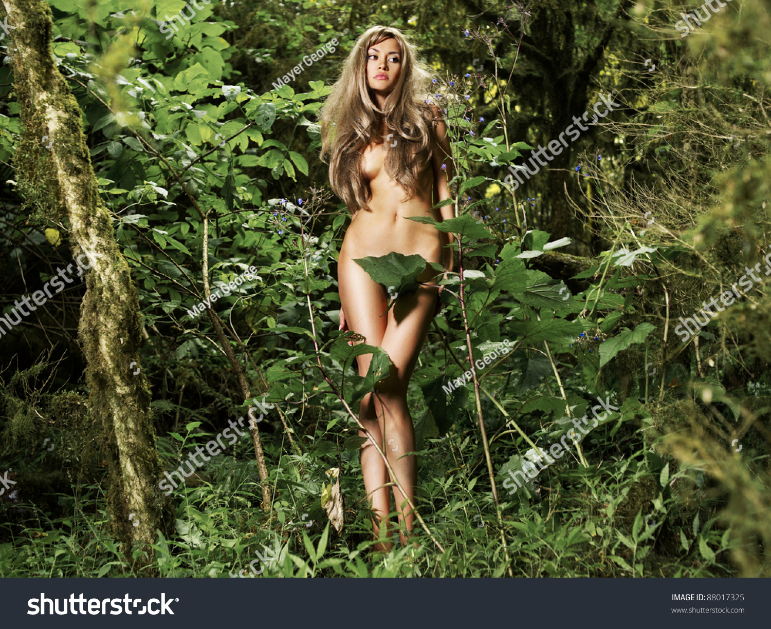 from Royce hot women in the jungle nude