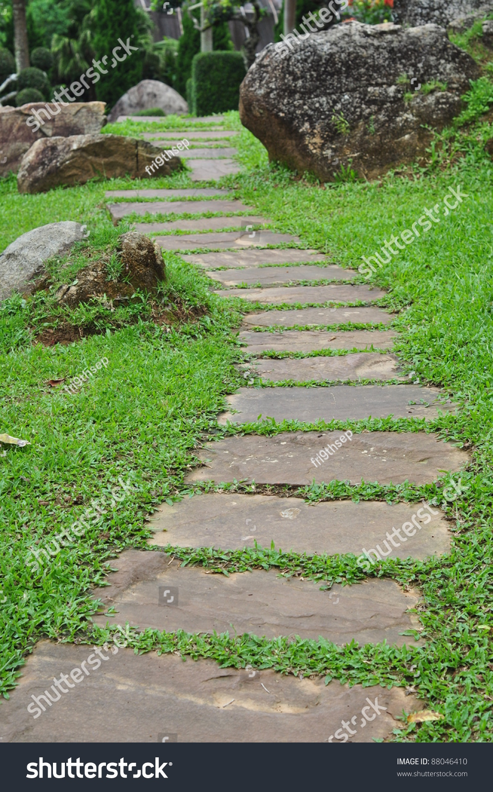 Garden stone path grass growing between stock photo for Stone path in grass