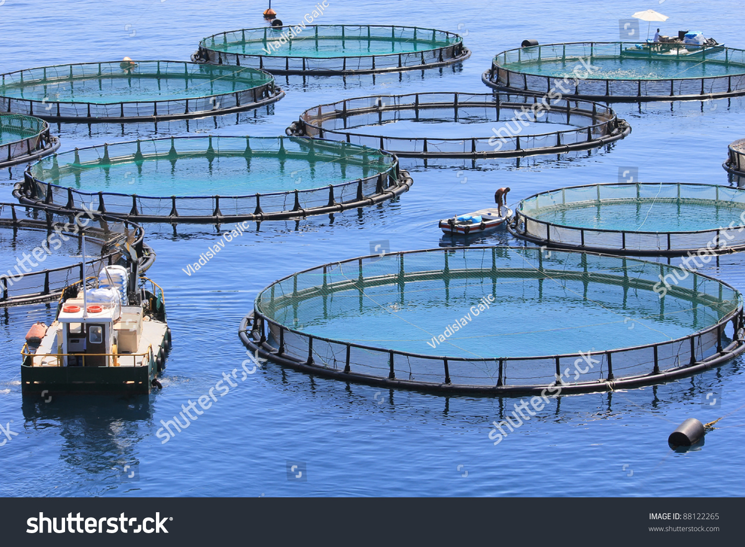Fish farm stock photo 88122265 shutterstock for What is fish farming