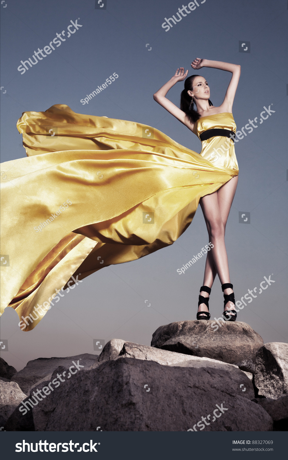 Beautiful Woman In Evening Dress Standing On A Rock Blown By The Wind Fashion Photo
