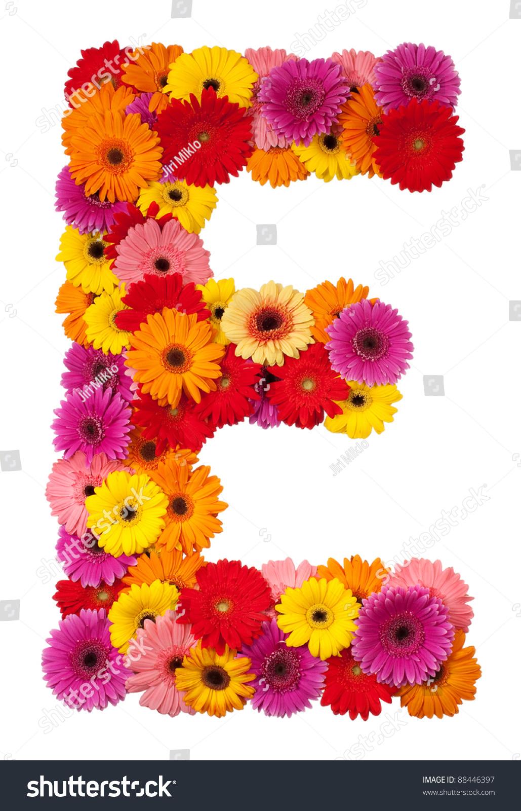 Letter E Flower Alphabet Isolated On Stock Photo 88446397 ...