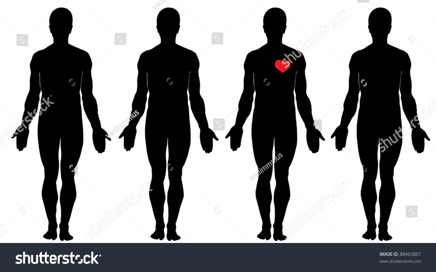 Anatomy Love Four Mens Silhouettes Four Stock Vector 88465867 ...