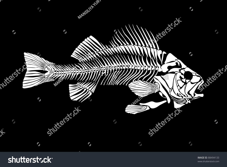 Fish Skeleton Isolated Stock Illustration 88494133 - Shutterstock