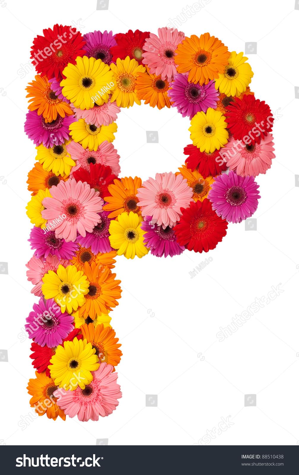 P Design: Letter P Flower Alphabet Isolated On Stock Photo 88510438