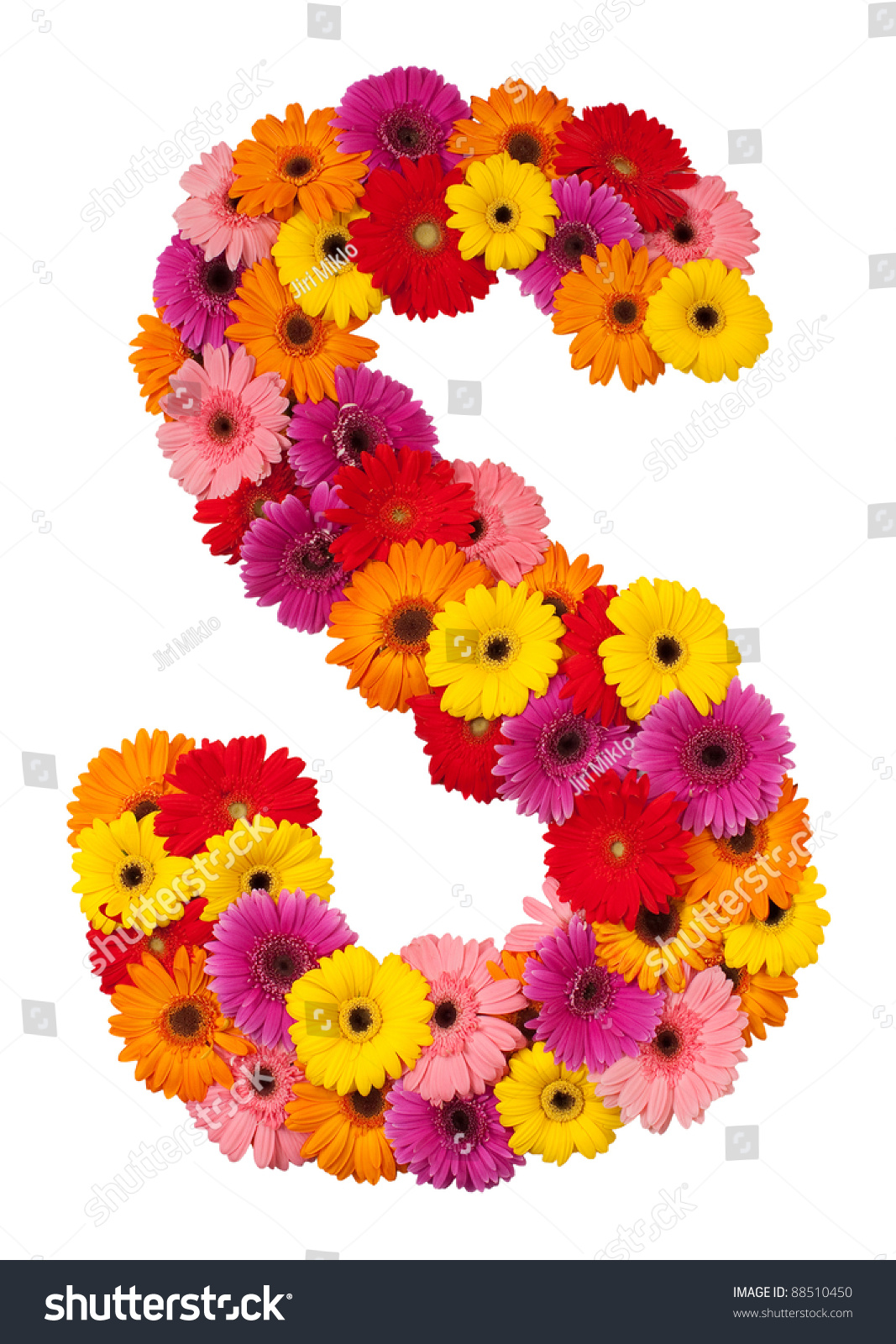 Letter S Flower Alphabet Isolated On Stock Photo (Royalty Free ...