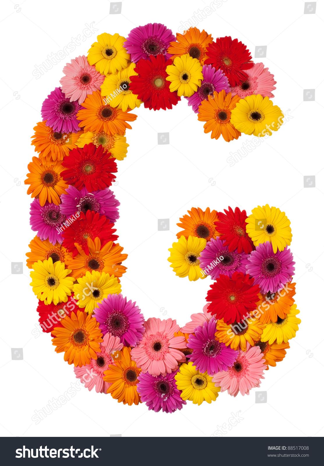 Background image 8851 - Letter G Flower Alphabet Isolated On White Background