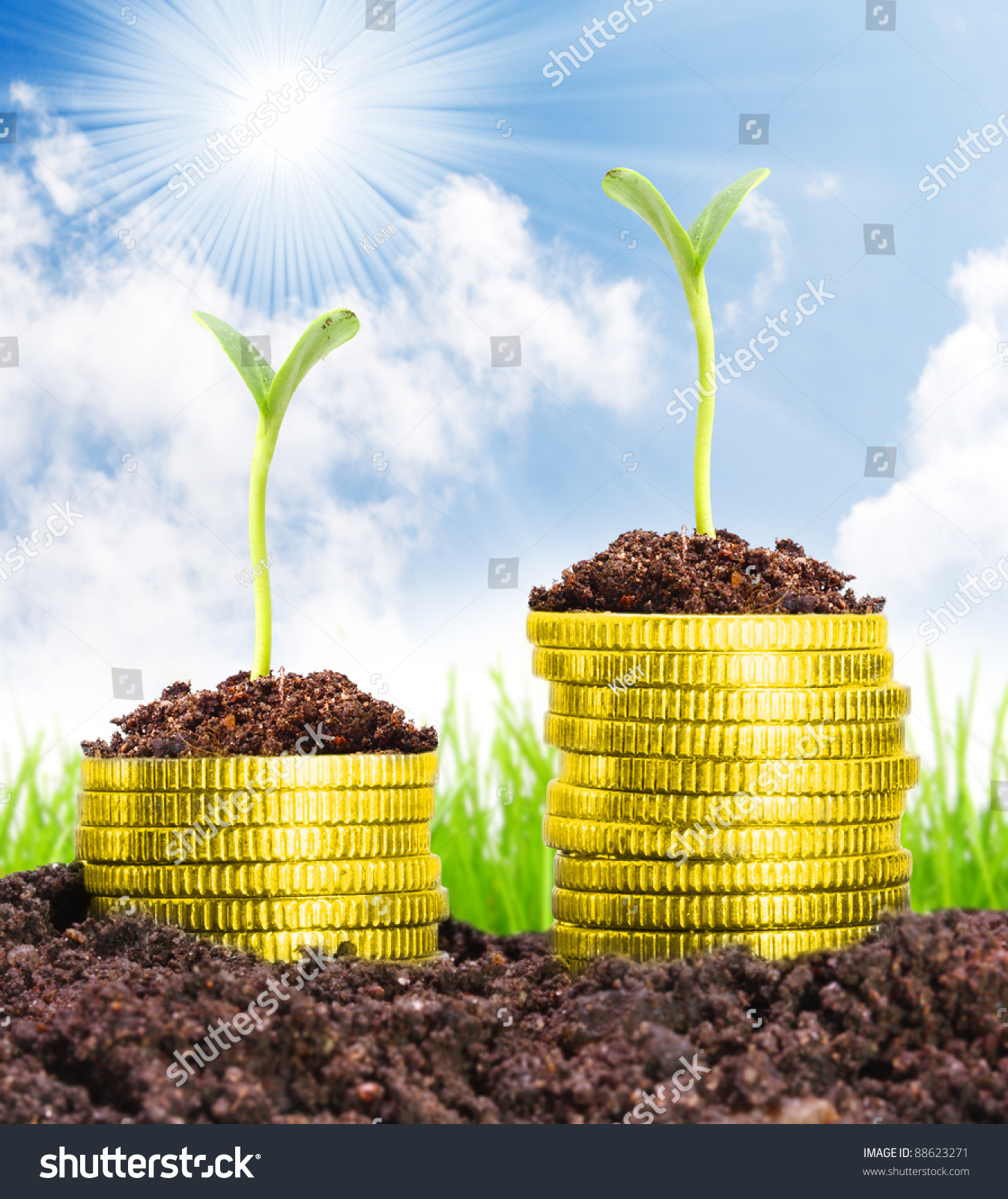 Money growth golden coins in soil with young plant for Soil young s modulus