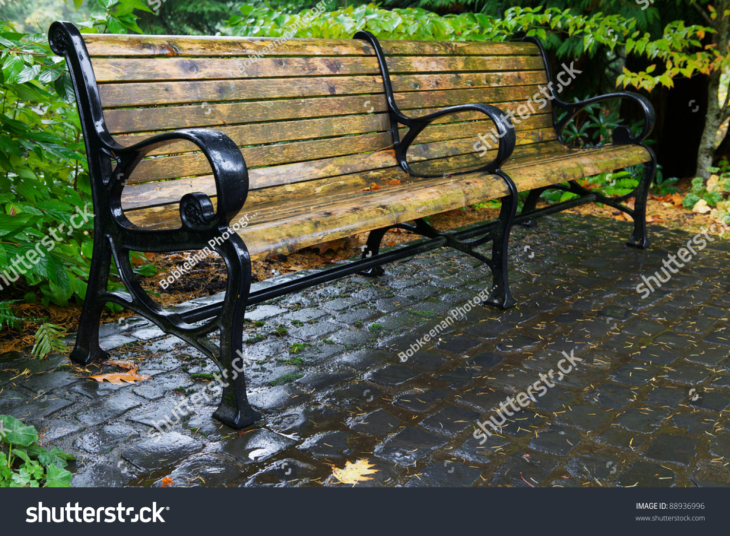 Wet Wood Black Painted Metal Bench Stock Photo Edit Now 88936996
