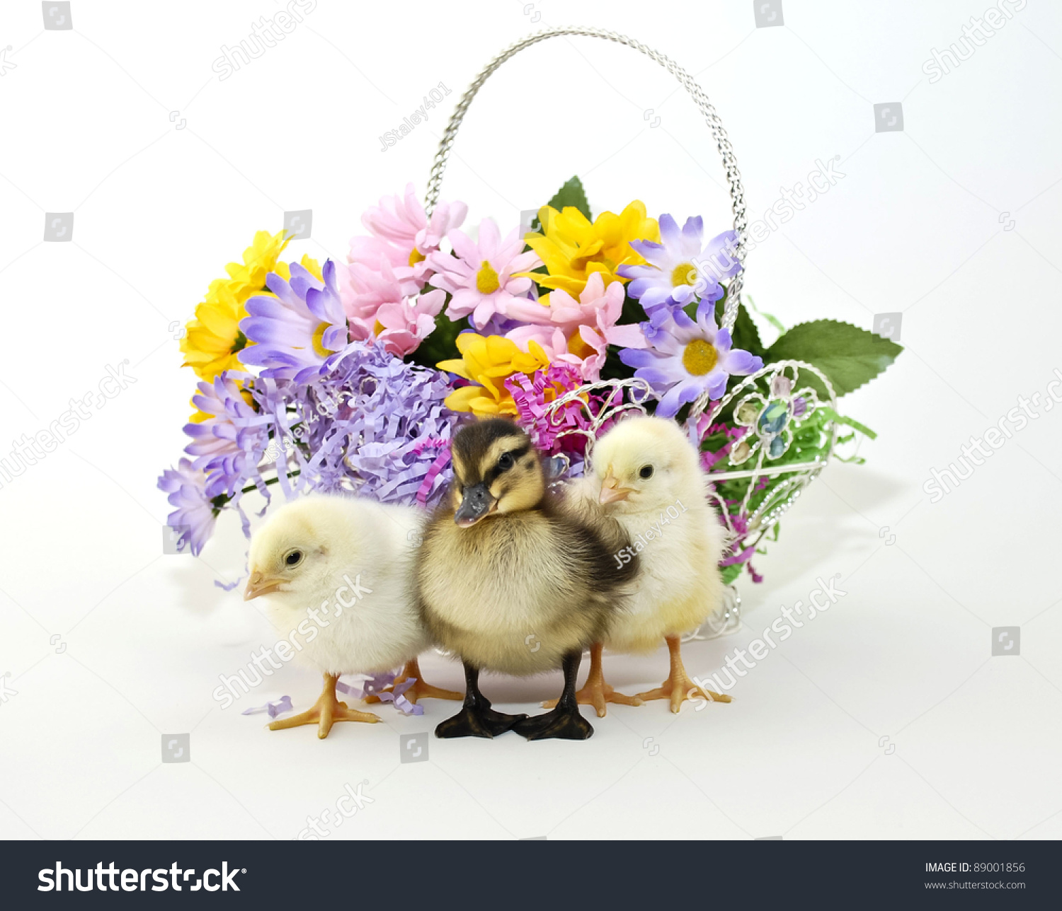 Easter Peeps And Baby Duckling Sitting With An Easter Basket Full Of