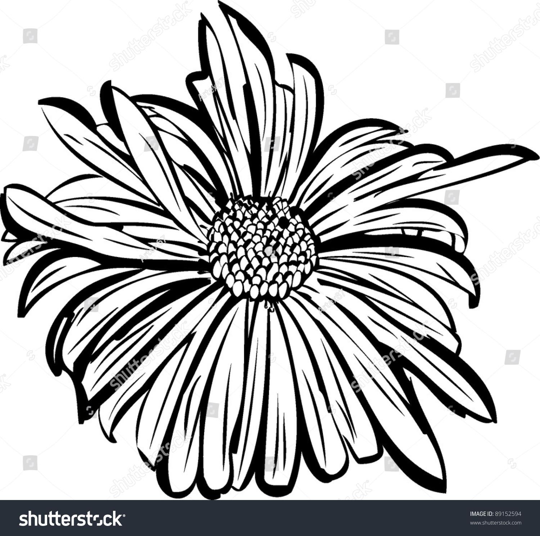 Flower garden sketch - Sketch Of A Flower Garden Resembling A Daisy
