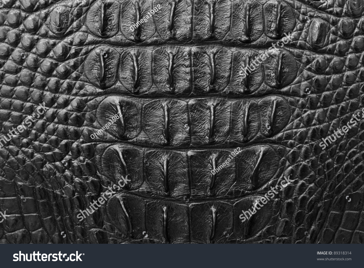 Crocodile Skin Texture Background Stock Photo 89318314 ...