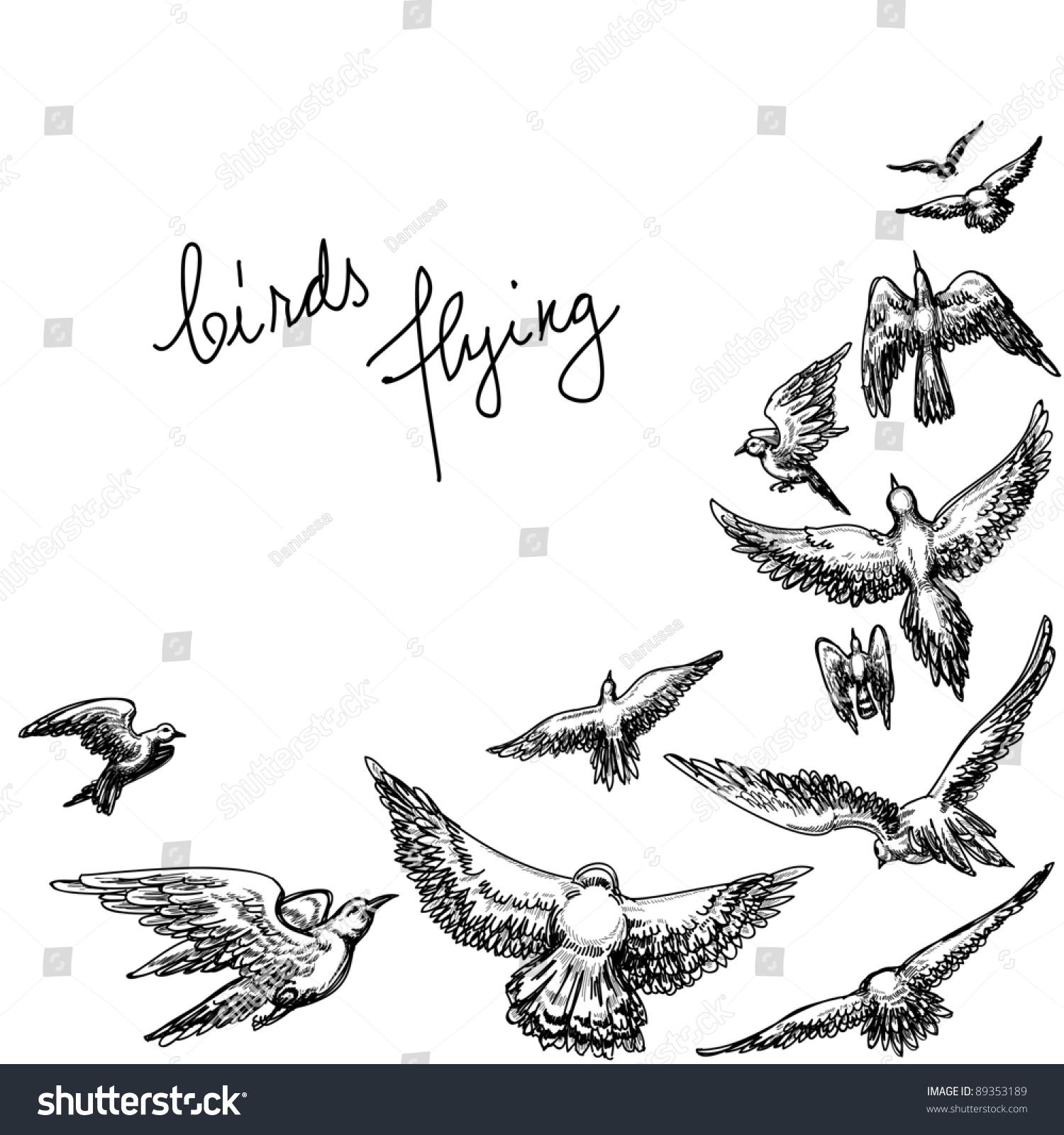 Stock Vector Flying Birds Background Pencil Drawing Vector Illustratio...