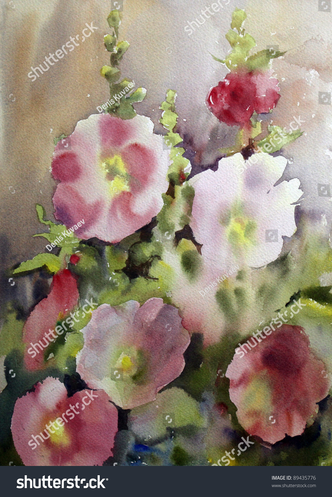 Watercolor painting beautiful flowers mallow stock illustration watercolor painting of the beautiful flowers mallow izmirmasajfo Image collections