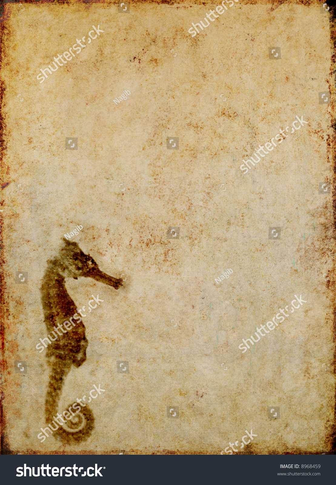 Brown Background Image With Interesting Texture, Close-Up ... - photo#5