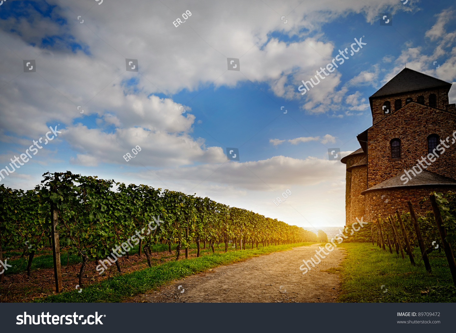 Old castle and a vineyard lighted by the sun stock photo for Sun castle