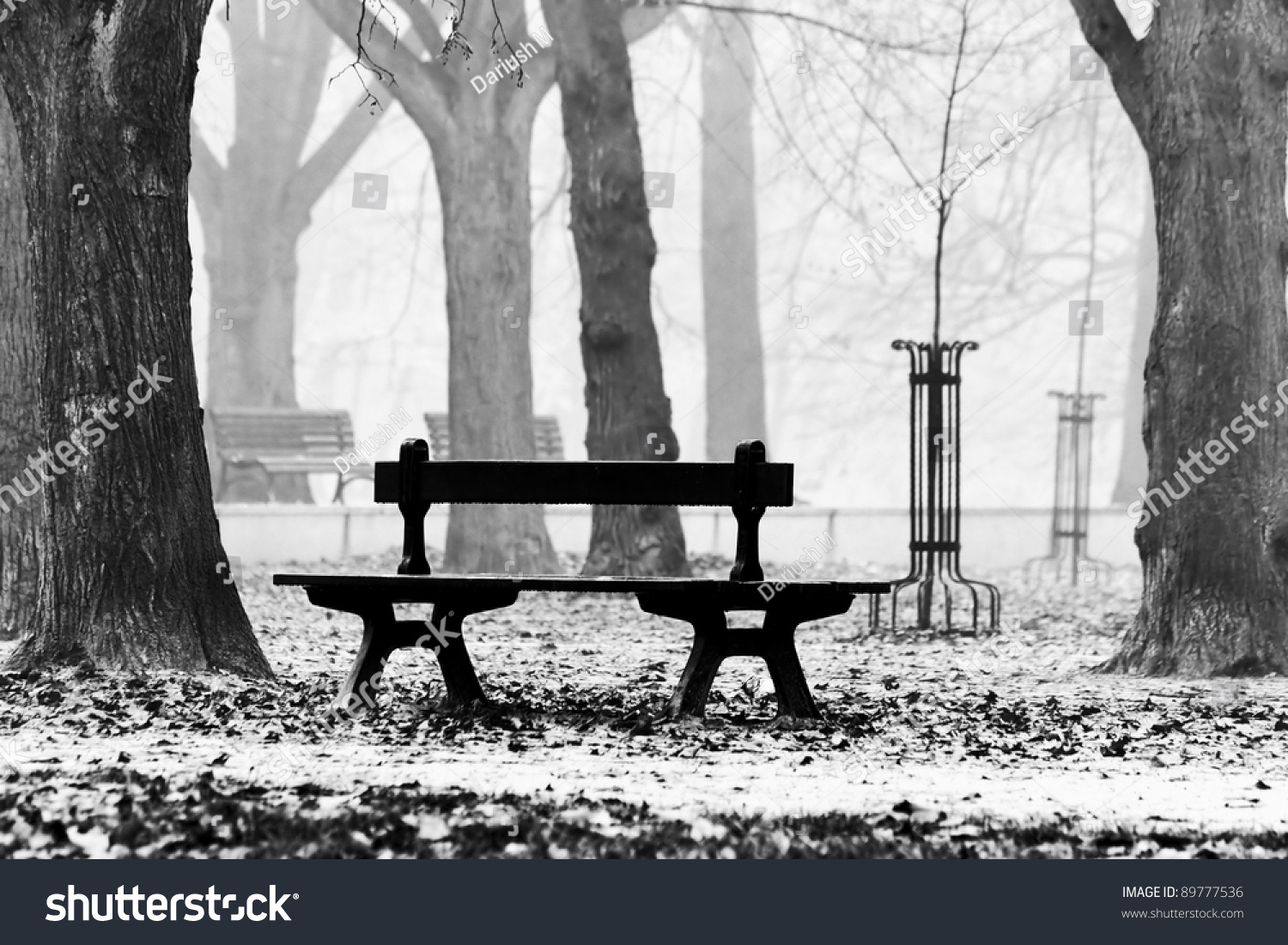 Bench In The Autumnal Park Black And White Stock Photo 89777536 Shutterstock