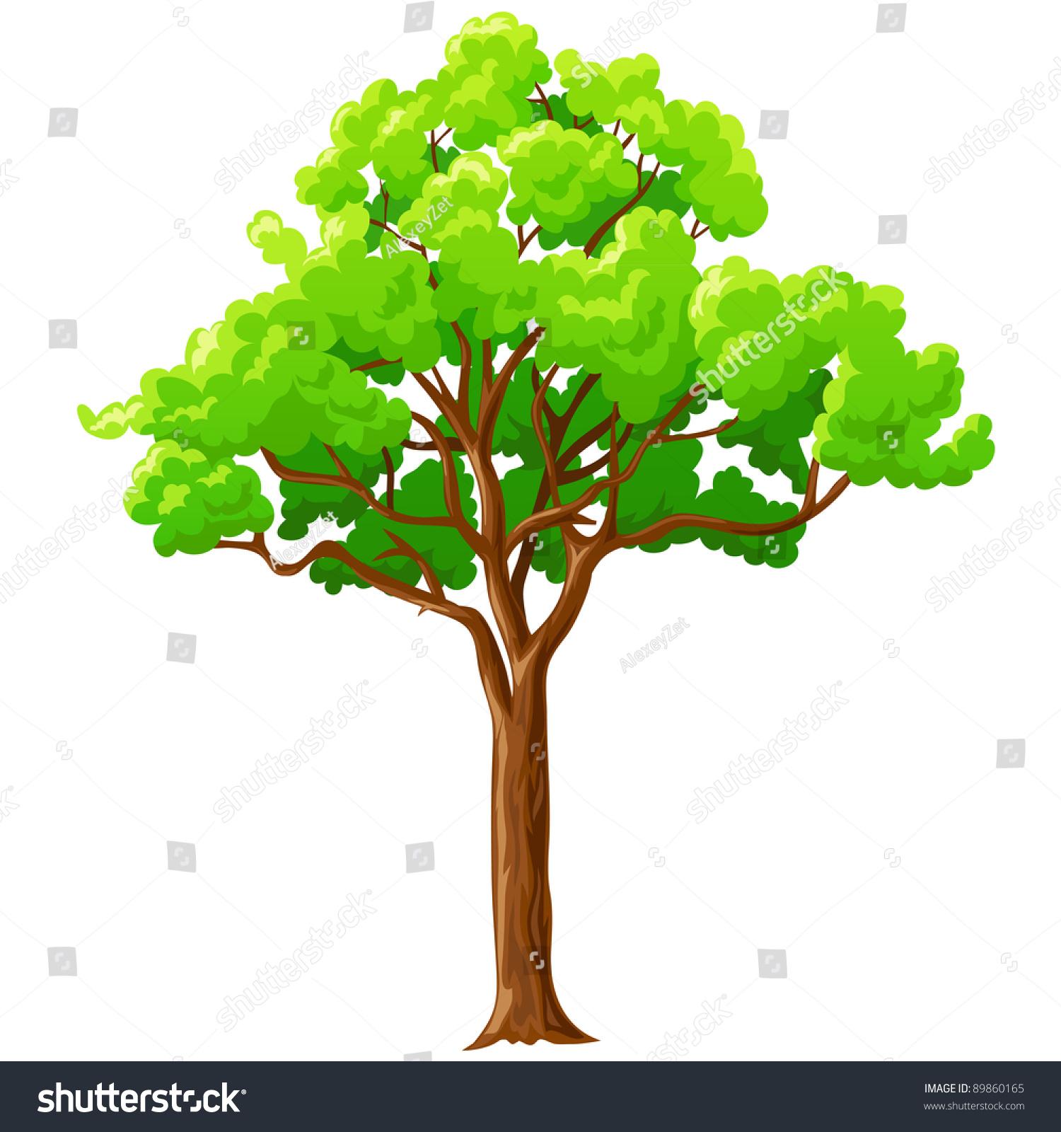 Cartoon Big Green Tree Branches Isolated Stock Vector Royalty Free 89860165 Download tree cartoon branch stock vectors. https www shutterstock com image vector cartoon big green tree branches isolated 89860165