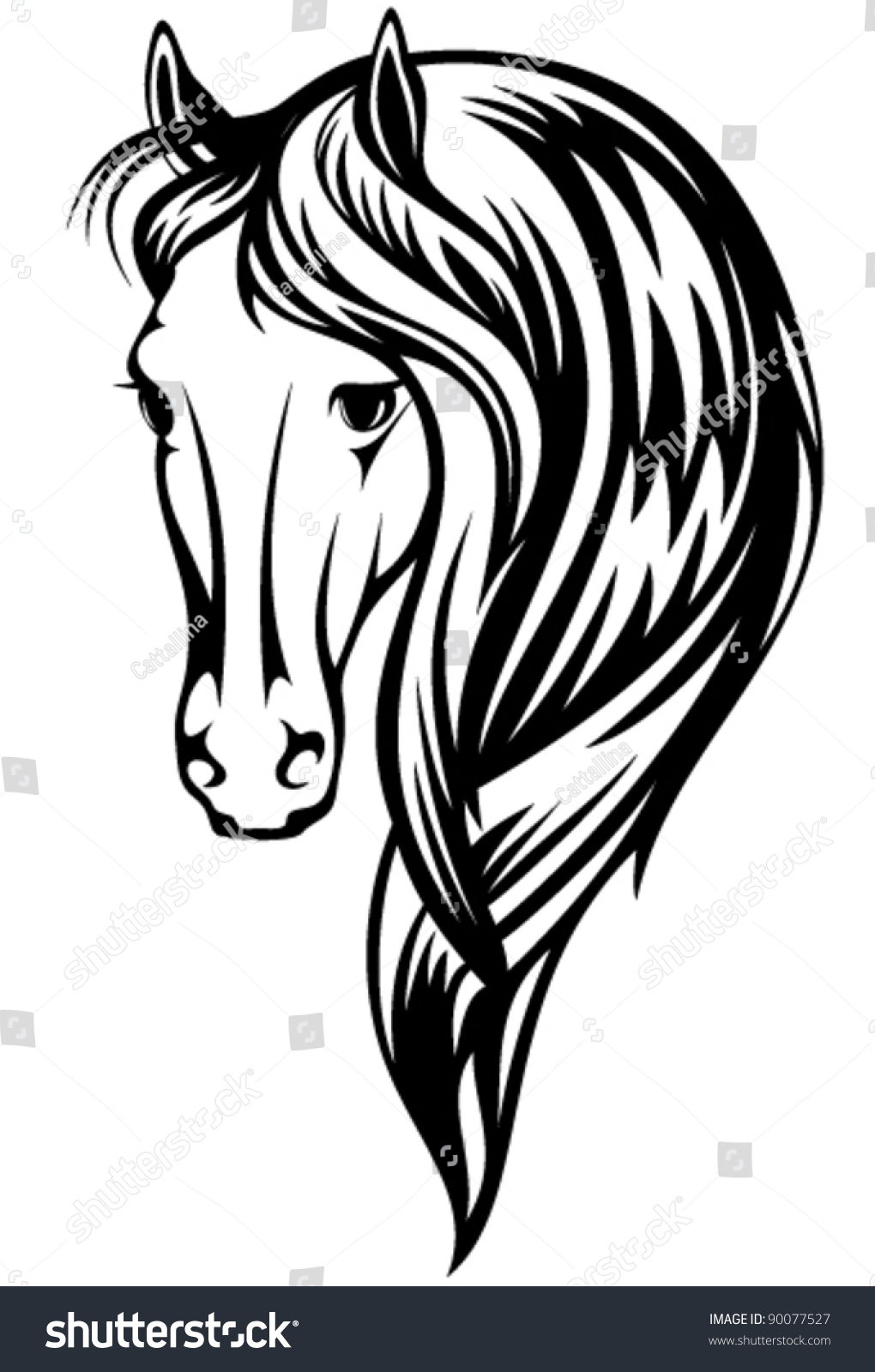 beautiful horse vector illustration black and white head