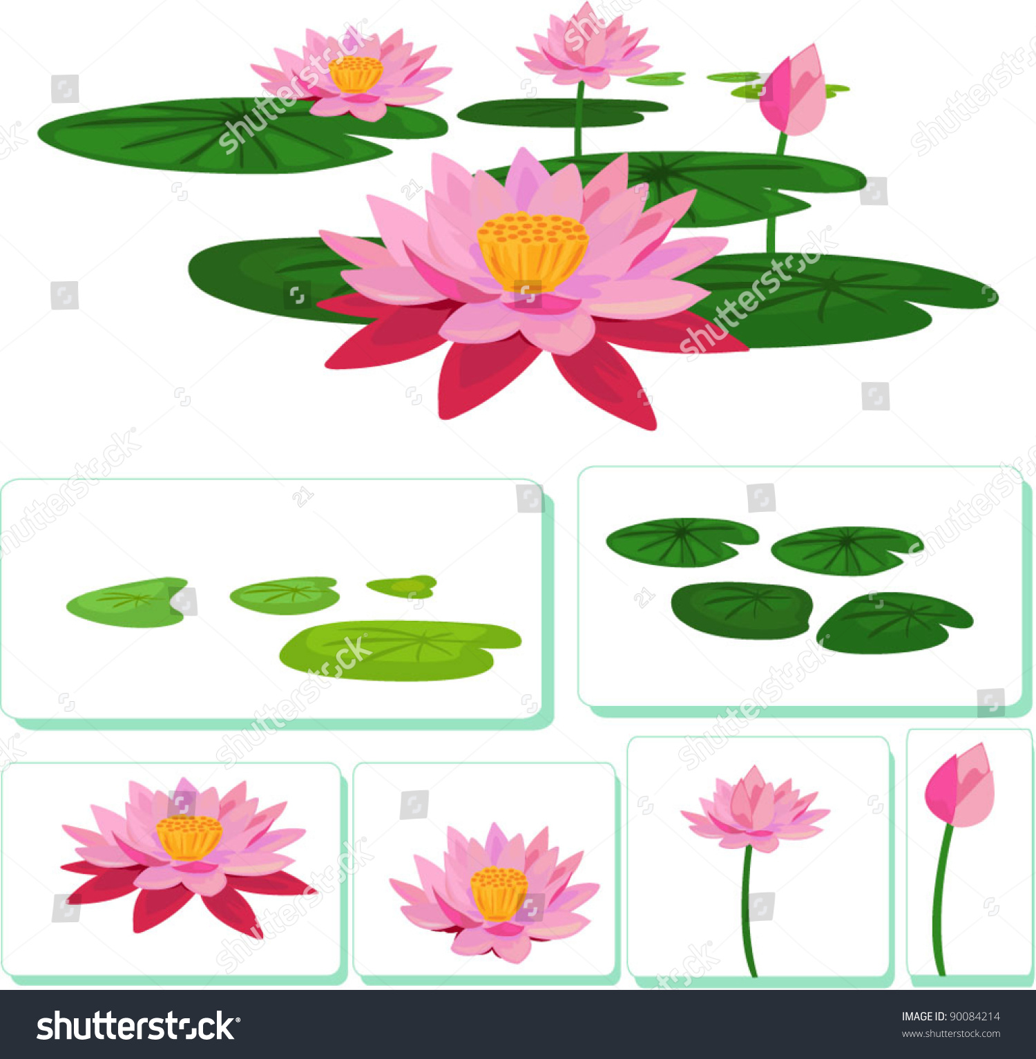 vector lotus stock vector 90084214 shutterstock lotus victory foundation 990 form lotus victorian flower language