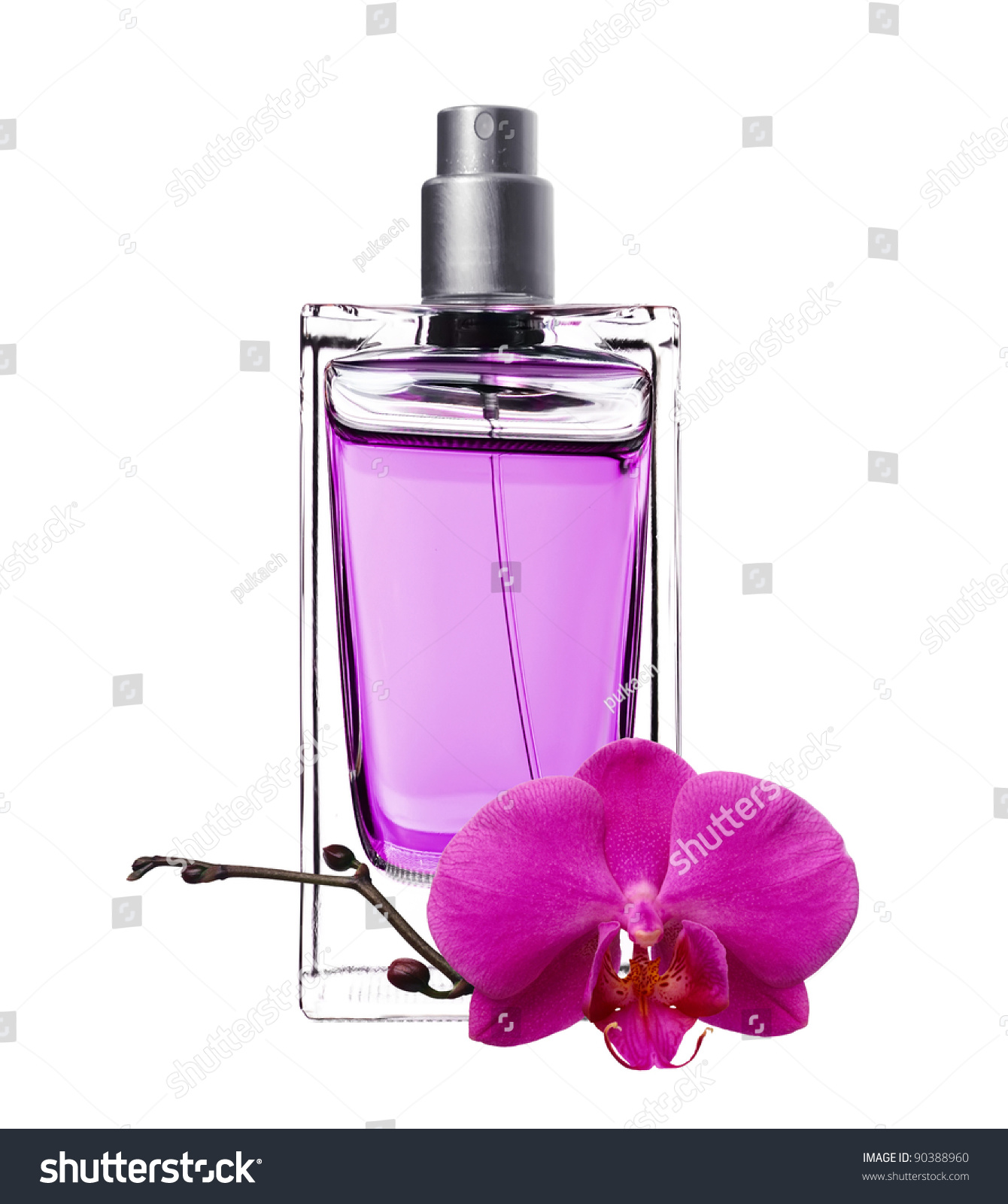 Mens Perfume In Beautiful Bottle And Violet Flower Isolated On