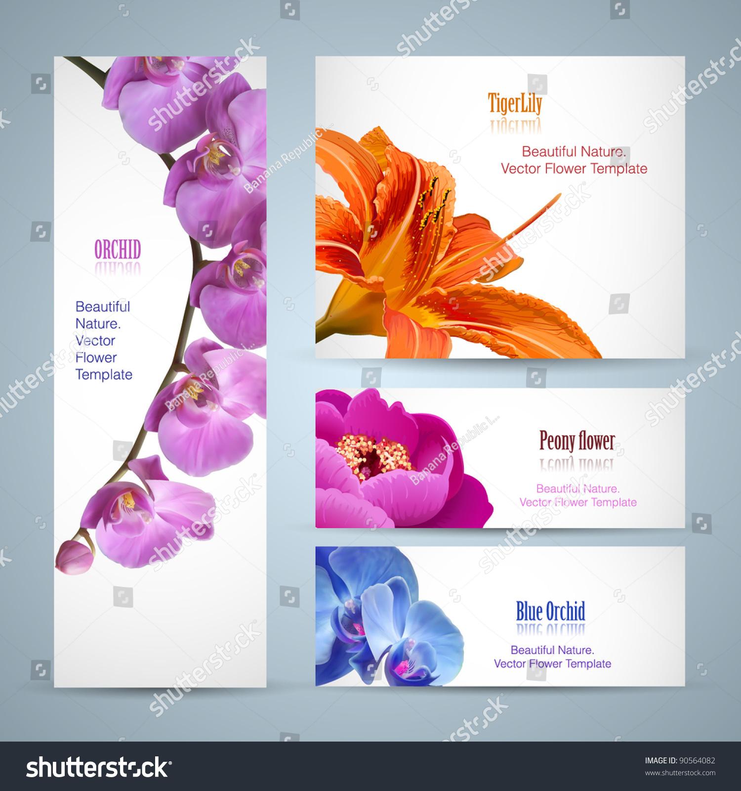 Flower Brochure Design Vector Layout Template Stock Vector